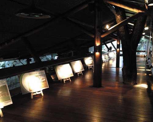 Iluminação Cênica em exposição de Quadros